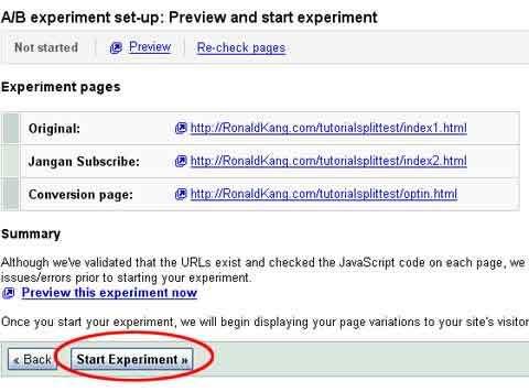 Google Website Optimezer13
