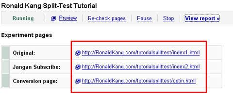 Google Website Optimezer14